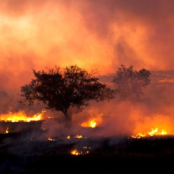 Geschichte des Feuers
