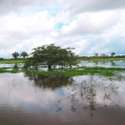 Statische Überschwemmung